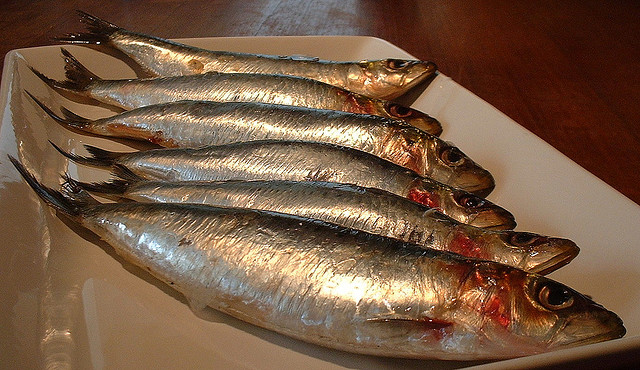 Portuguese festival honors st anthony with sardines for What does it mean when your sperm smells like fish