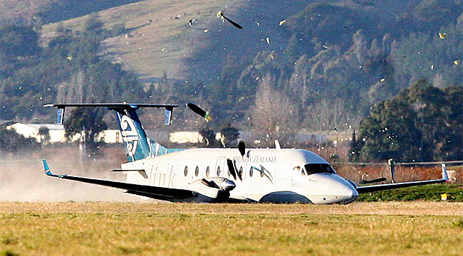 Bleinheim Plane Crash Landing