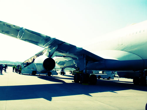 Lufthansa Airplane At The Terminal