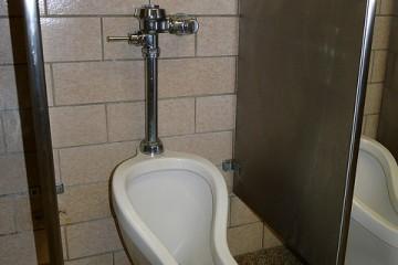 Average Toilet