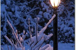 narnia lamp post