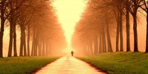 Alone in the Fog, Liege, Belgium
