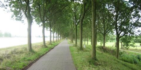 Rijn Kanaal Bike Path, Amsterdam