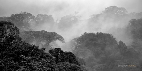 Beyond the Fog, Costa Rica