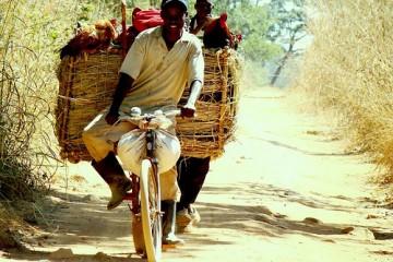 Happy Bicyclist, Congo