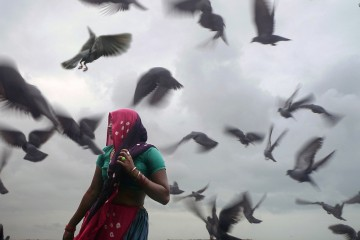 Woman in swarm of birds in Dwarka, India