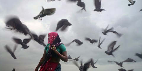 Woman in swarm of birds in Dwarka, India