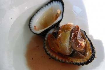 Blood Clams (Opened)