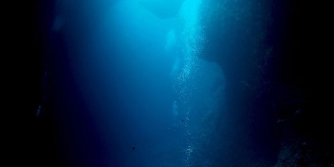 Diver looking up at bottom of blue hole in Palau