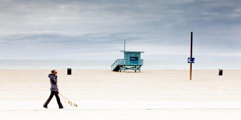 Walking the Dog in California's Tsunami Hazard Zone