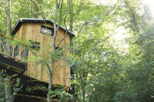 Dove Men+Care Treehouse Near Chattanooga, TN
