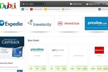 DubLi Website (screenshot)
