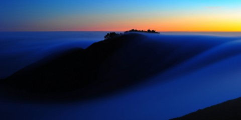 A Foggy Dreamscape Near San Francisco, California