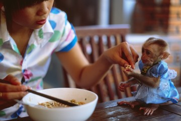 Girl sharing bowl of noodles with monkey, Binh Thuan, Vietnam