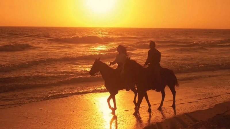 Couple Horseback Riding on the Beach
