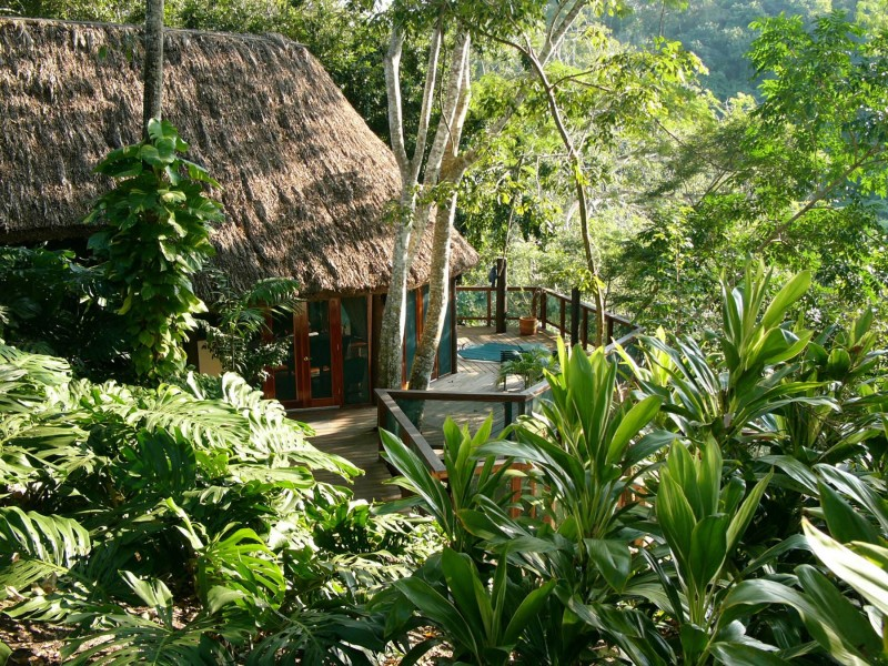 Going Wild: Exploring 5 of the World's Most Incredible Jungle Escapes — Vagabondish
