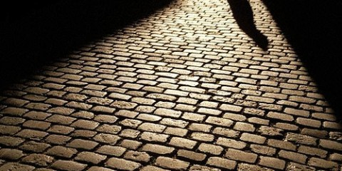 Single Shadow on Brick Path