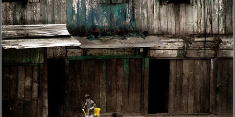 Lonely Boy, India