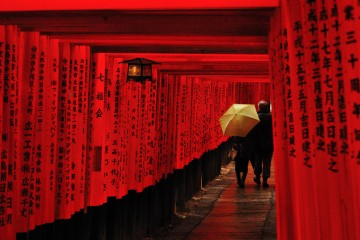 Lost in Red at Inari Shrine, Kyoto