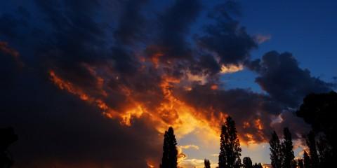 Mendoza Vineyard Sunset, Buenos Aires