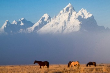 Mountains of Jackson Hole, Wyoming