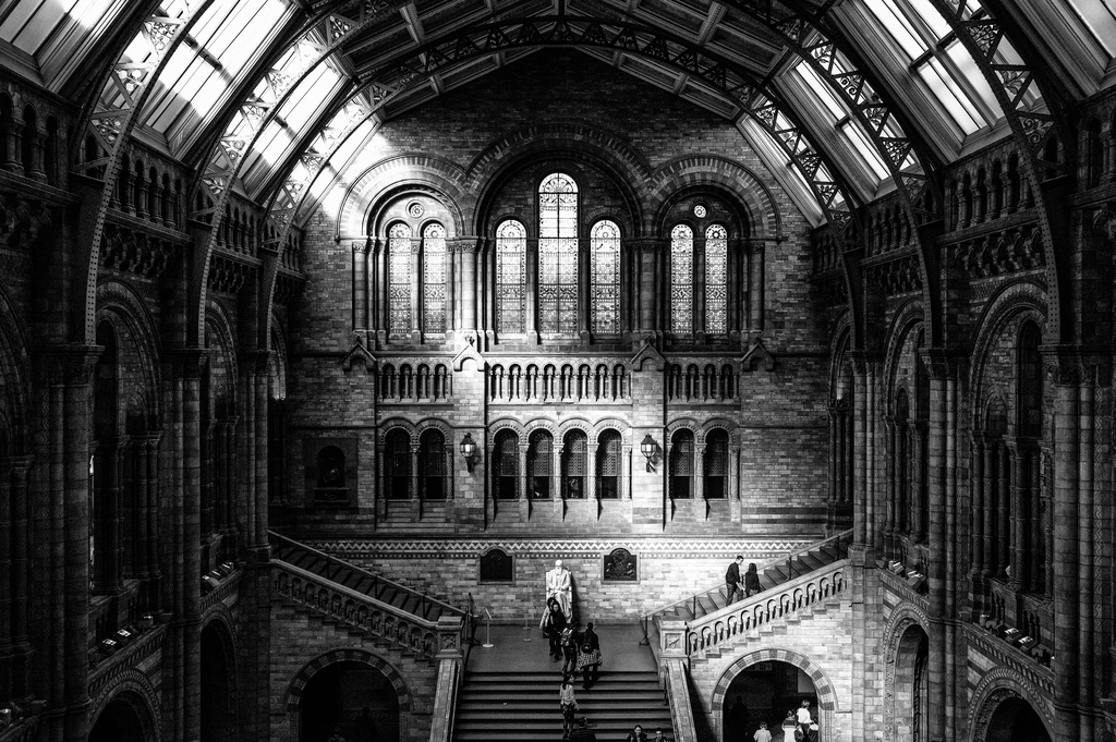 Natural History Museum, London (interior)
