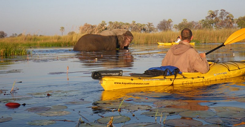 Grab a Paddle! World's First Point-to-point, 120-Mile Kayaking Expedition Across Botswana's Okavango Delta — Vagabondish