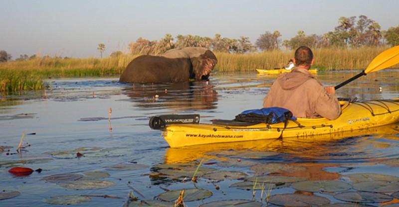 Natural Habitat Adventures Trip: Kayaking Botswana's Okavango Delta