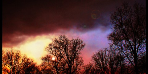 Neon Sky in Bowling Green, Kentucky