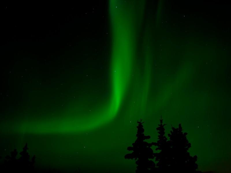northern-lights-whitehorse-yukon-canada-6769910791