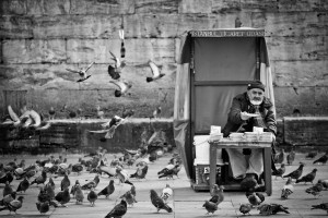 The Old Man and the Pigeons, Istanbul