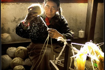 Old woman spinning wool at Tibetan Carpet Factory in India
