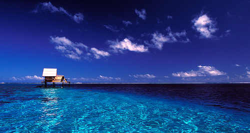 Photo of the Moment: Lone Pearl Farm, Tahiti — Vagabondish