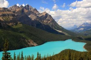 Peyto Lake in Banff National Park, Alberta, Canada