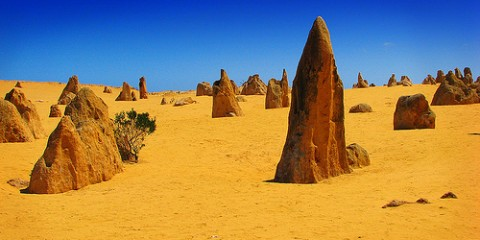 pinnacles-nambung-national-park-perth-australia-259456150