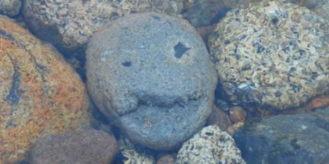 Pirate Rock from the Pemigewassett River