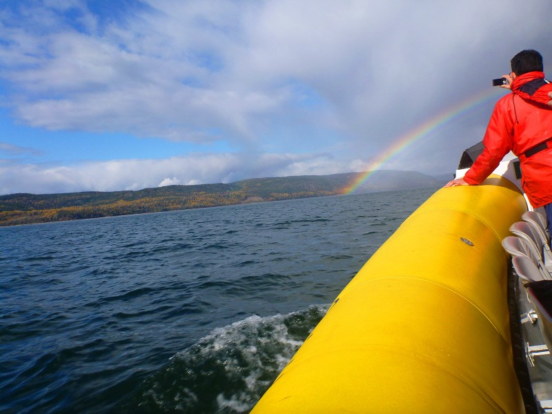 Rainbow and Whale Watching Near Tadoussac, Quebec