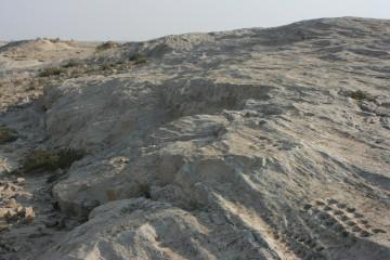 Rock Carvings of Al Jassasiya, Qatar