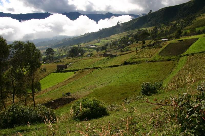 Rural Ecuador