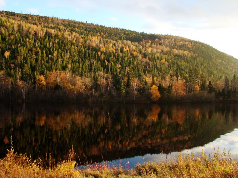 Autumn Colors of Saguenay Fjord, Quebec