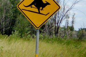 Signspotting: Beware of Skiing Kangaroos, Australia