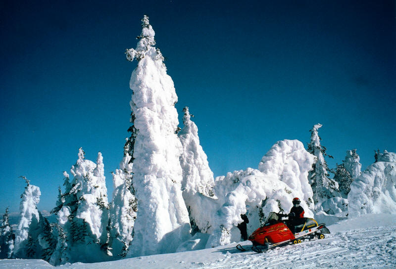 Snowmobiling Near West Yellowstone, Montana