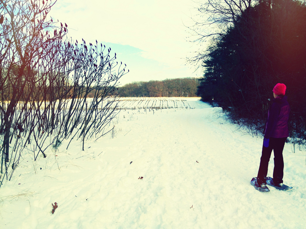 Snowshoeing in Massachusetts