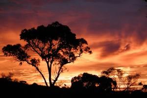 Sunrise in Perth, Western Australia