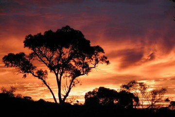 Sunrise in Perth, Western Australia