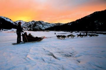 Sunset Dog Sledding at Squaw Valley