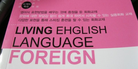 Teaching English Language Book
