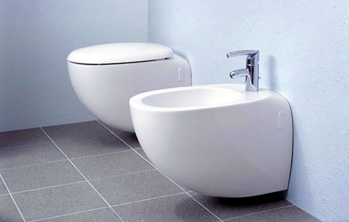 An Idiot's Incomplete Guide To The Bidet