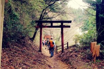 Torii Gate on Japan's Kumano Kodo Pilgrimage