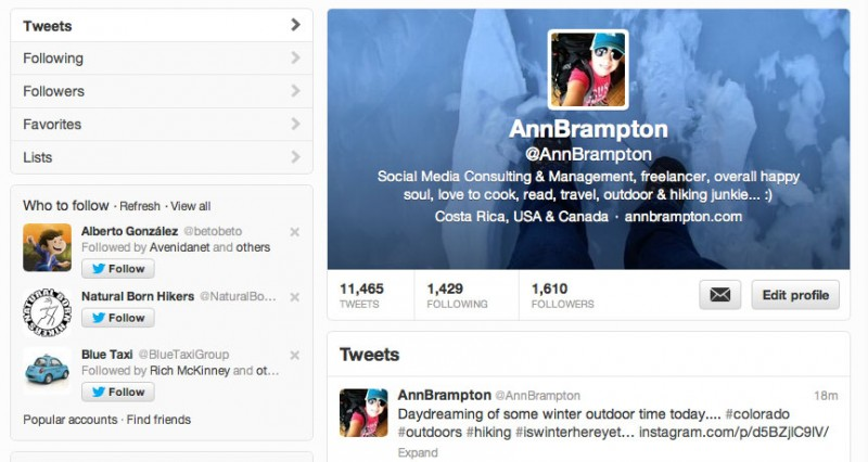 Ann Brampton's Twitter profile (screenshot)